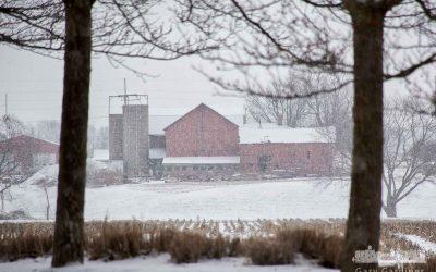 Snow Across The Farm Field