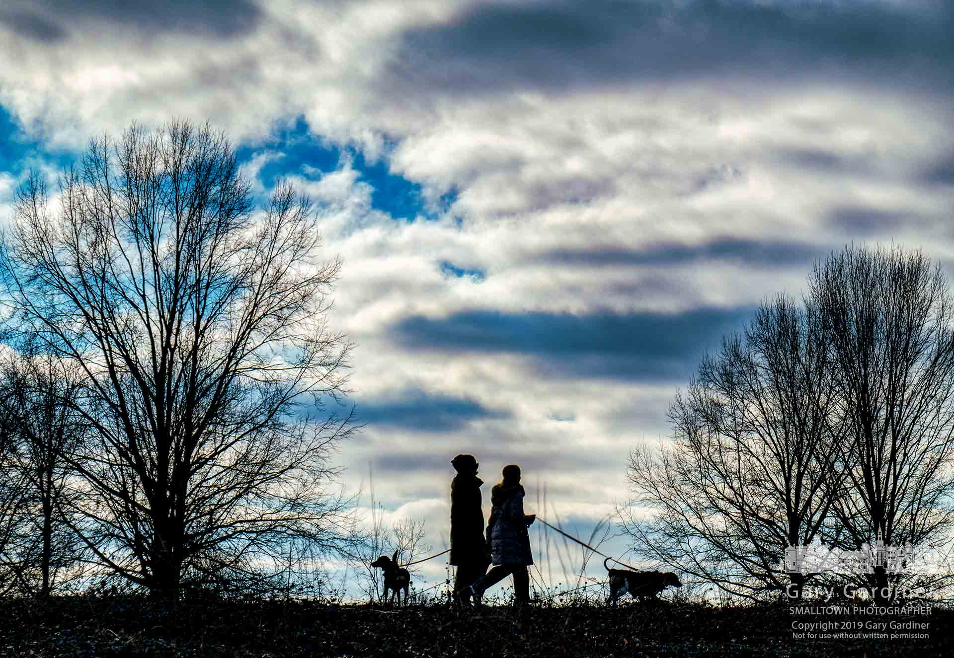 A pair of dog owners walk their charges along one of the paths in Sharon Woods Metro Park during the afternoon group dog walk. My Final Photo for Feb. 16, 2019.