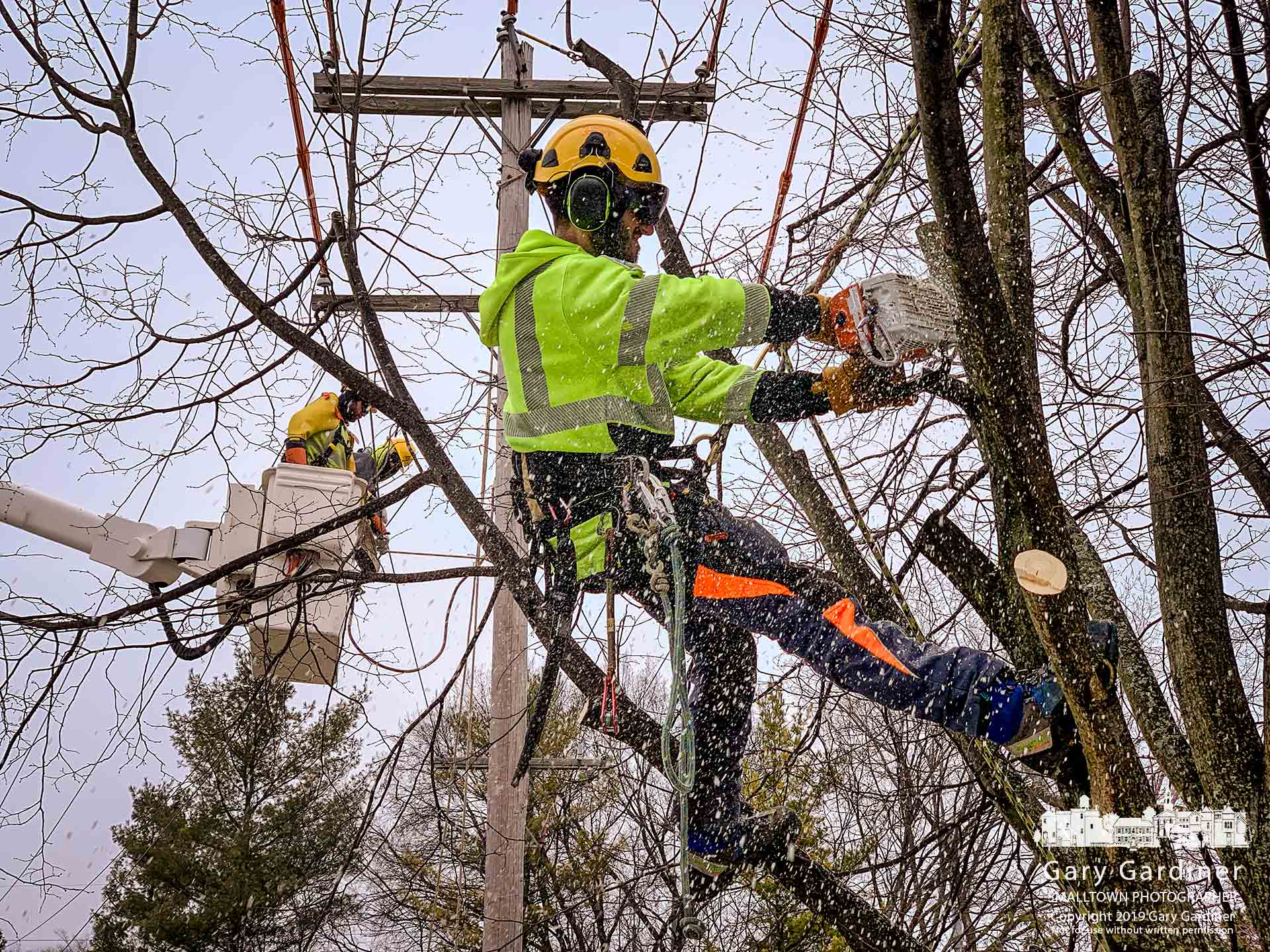 A Westerville city arborist cuts way limbs obstructing the installation of a new utility pole on East Walnut near Spring Road as a second crew temporarily relocates the power lines before completing the job. My Final Photo for March 8, 2019.