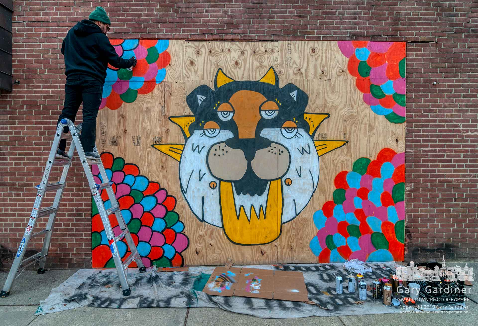An artist spray-paints a rendering of the Crew Cat on plywood covering the window in the front of Jimmy V's that was destroyed in a car crash earlier in the week. My Final Photo for March 16, 2019.