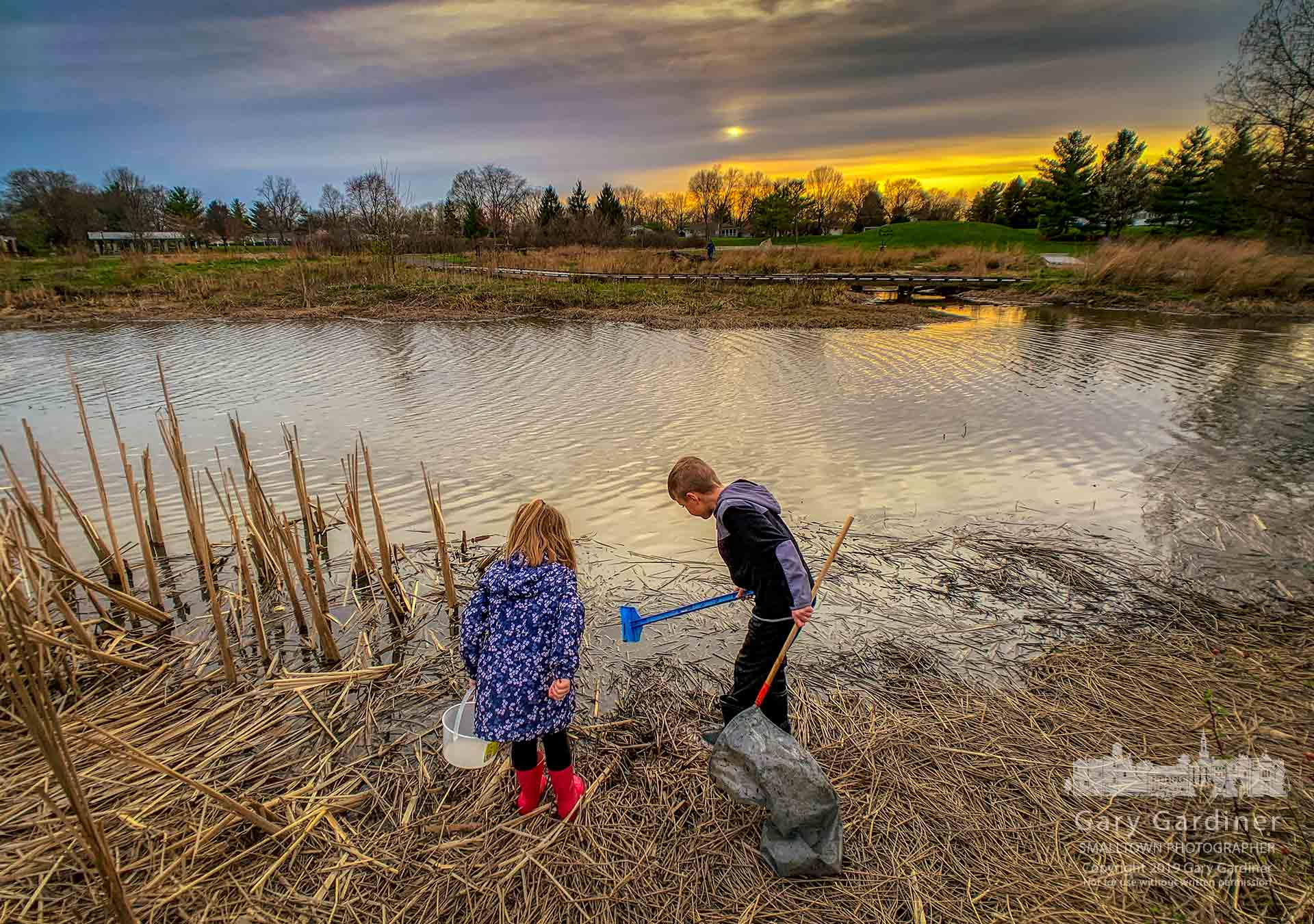 Children return a pair of mating frogs to the Highlands Park wetlands after showing them to their parents and a naturalist who identified their activity during the first Frog Friday at the park. My Final Photo for April 12, 2019.