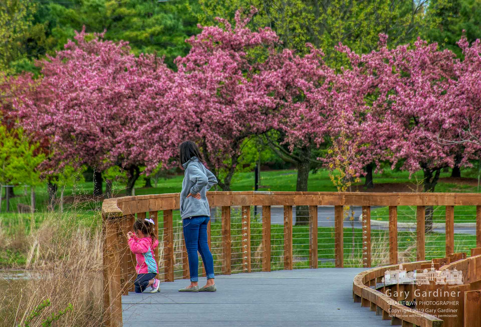 A woman and child out for a morning walk pause on the boardwalk at the wetlands at Highlands. My Final Photo for April 29, 2019.