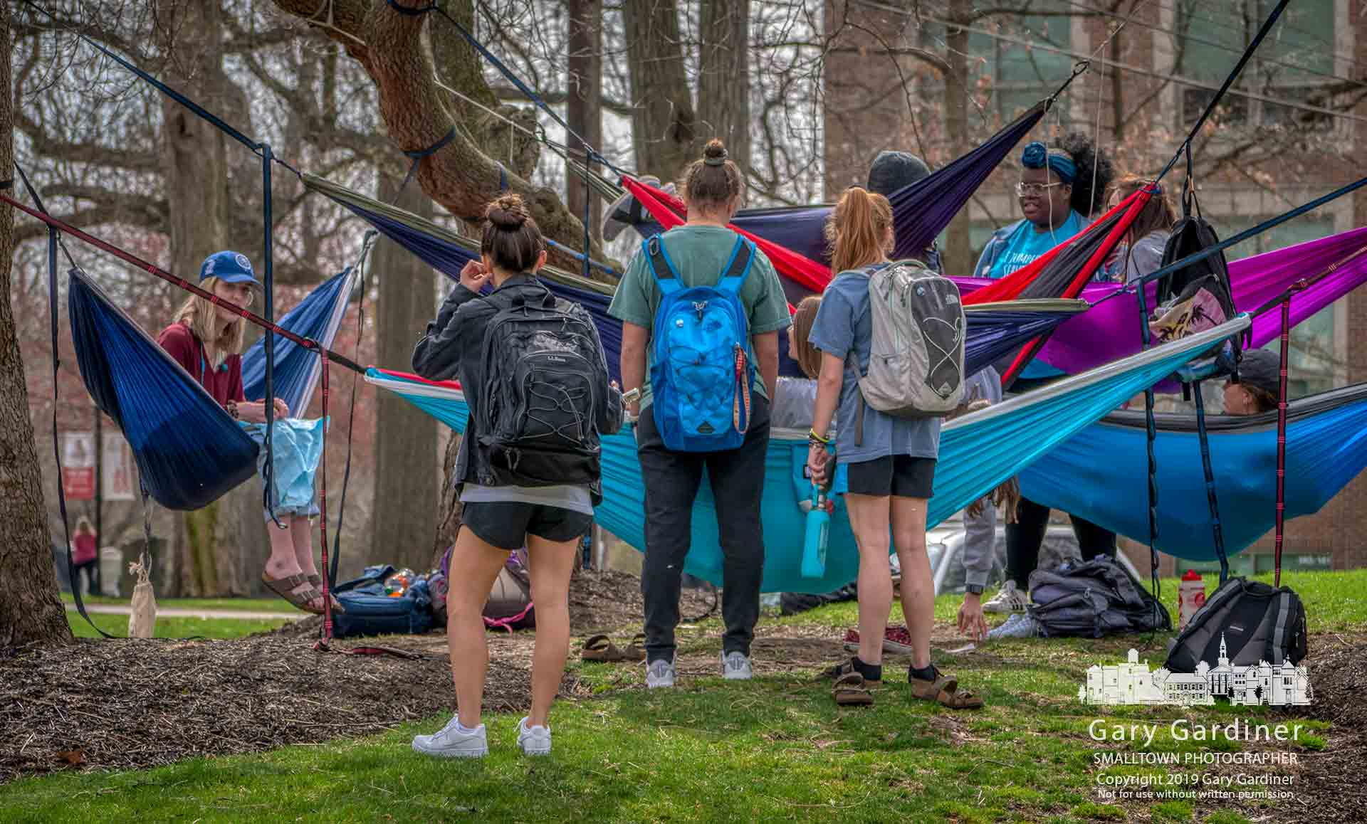 Otterbein students gather at hammocks hung at West Main and Grove as spring weather warmed the campus. My Final Photo for April 8, 2019.