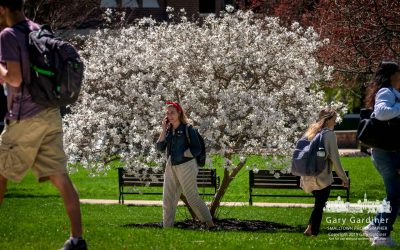 Springtime On Campus
