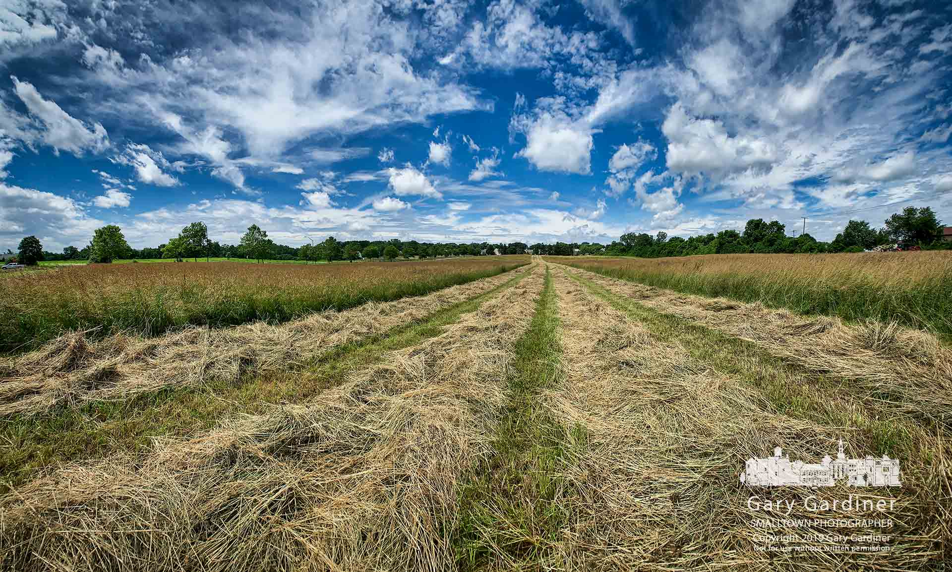 Clouds in a blue summer sky hang over four rows of hay drying in a section of the Otterbein fields along Cooper Road. My Final Photo for June 24, 2019.