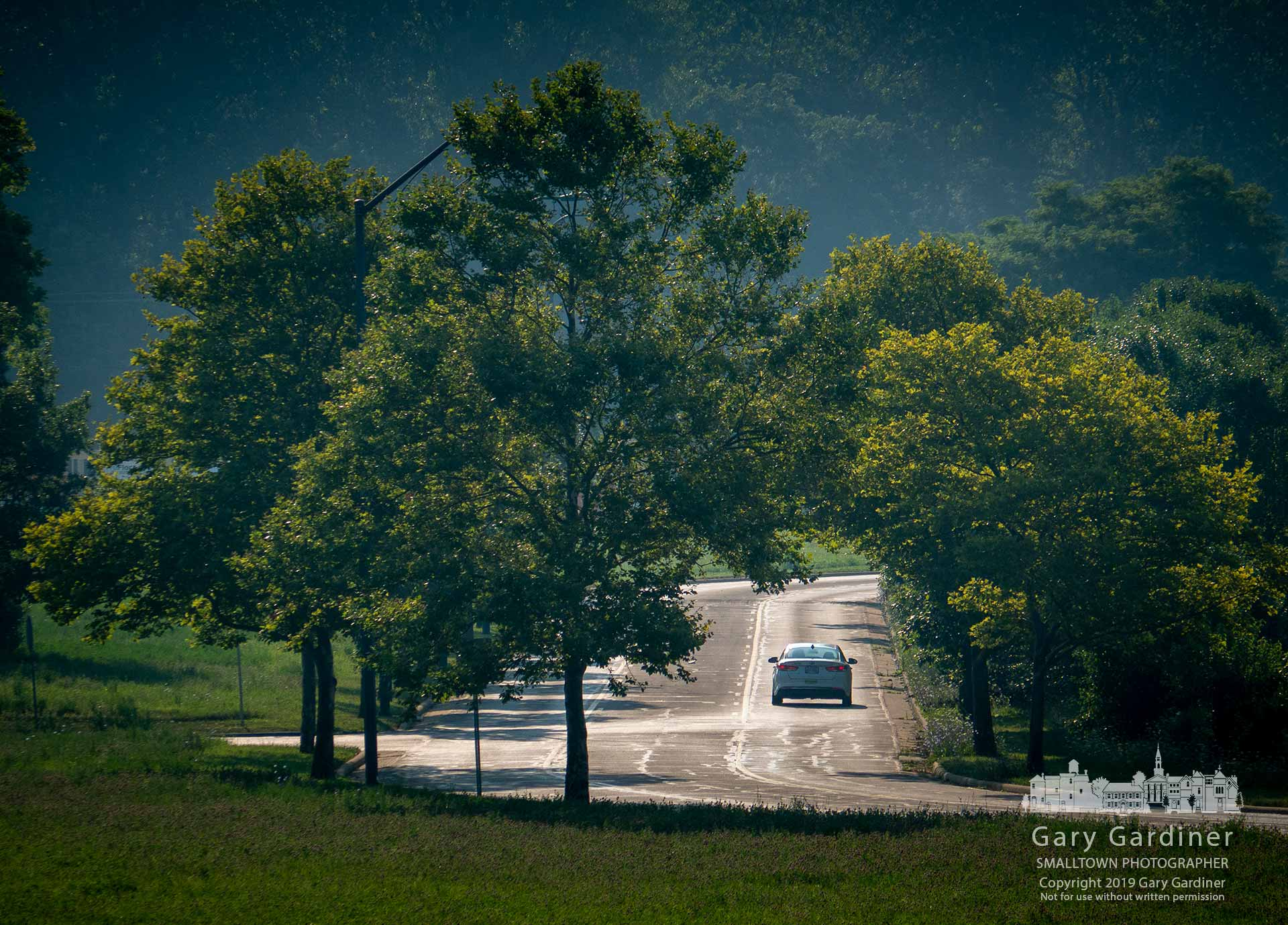 A lone driver travels down Cooper Road into the morning sun. My Final Photo for July 29, 2019.
