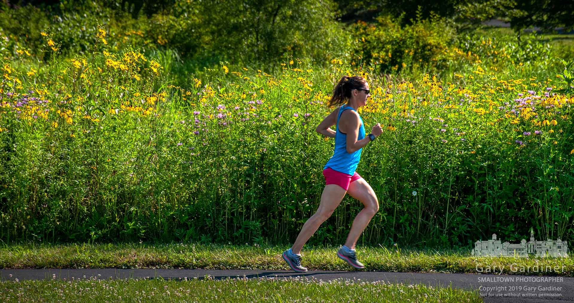A runner strides past a colorful wall of flowers growing along the path through a section of the wetlands at Highlands Aquatic Park. My Final Photo for Juy 9, 2019.