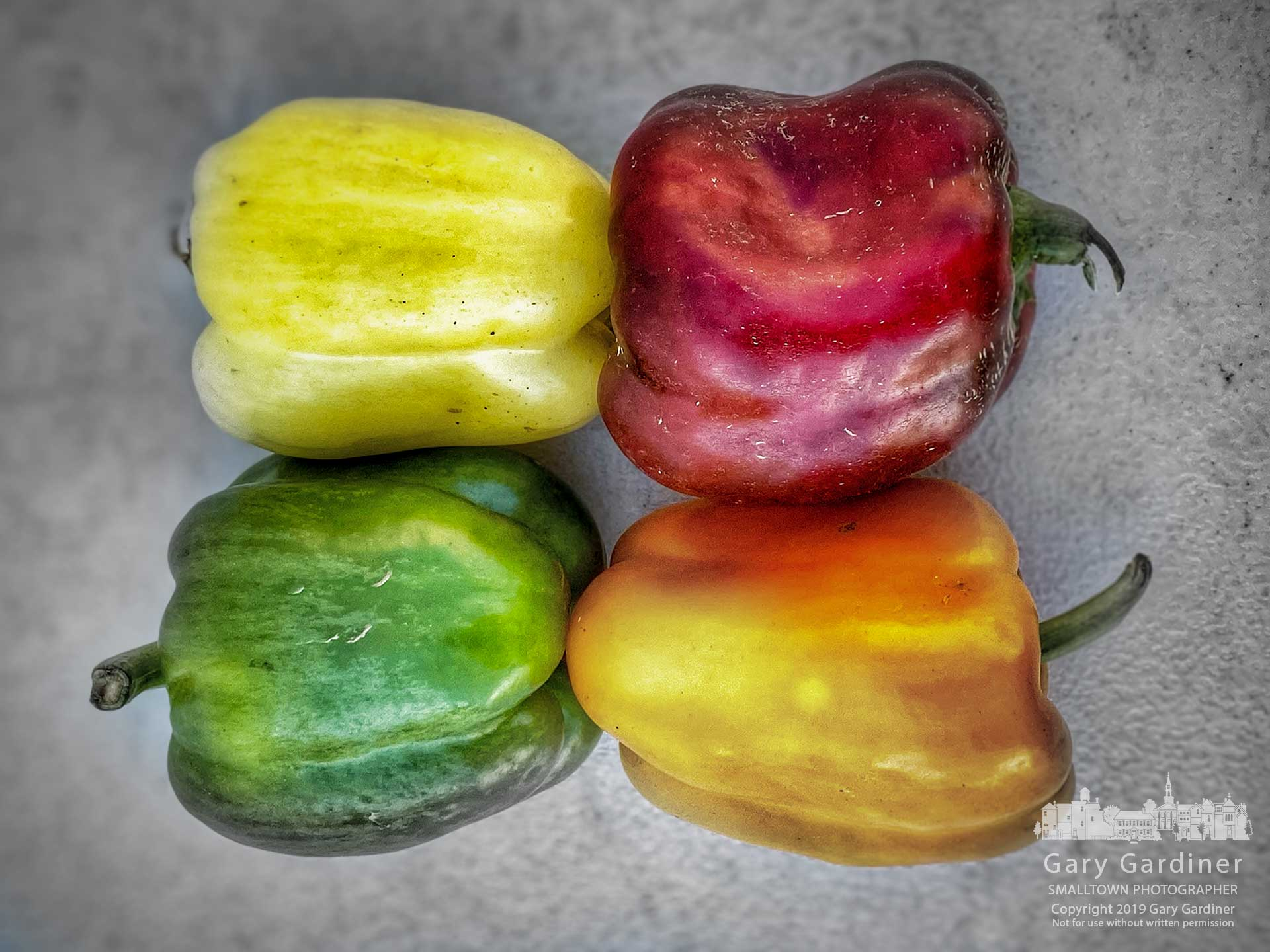 If Peter Piper picked a peck of pickled peppers this selection of peppers from the Wednesday Farmers market would surely be among the choices. My Final Photo for Sept. 25, 2019.