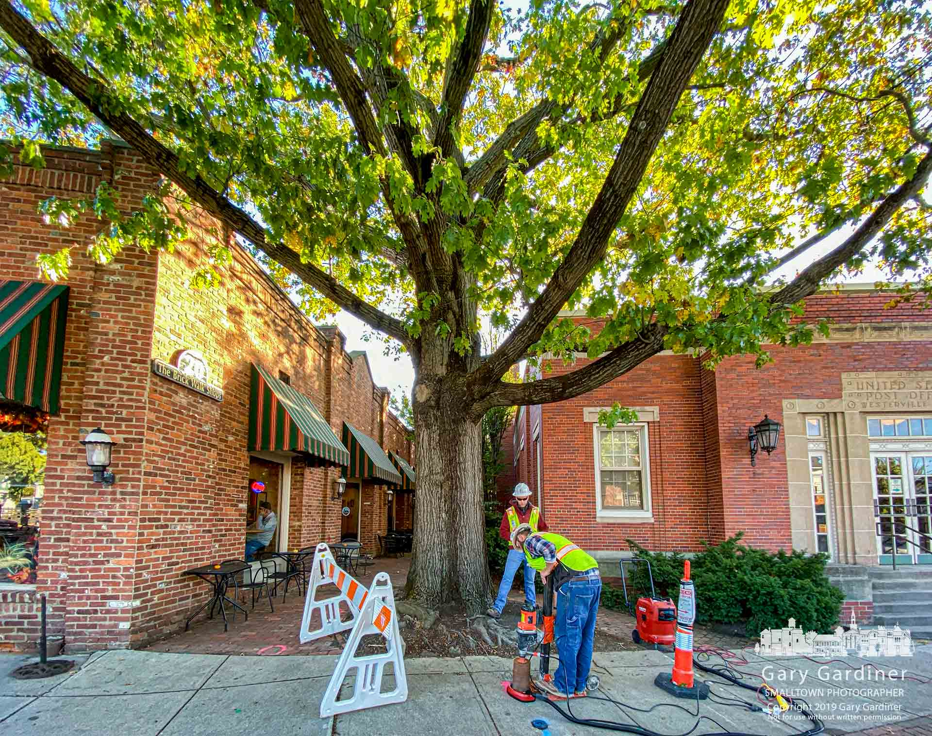 A crew cuts out rounds of sidewalk at the entrance to the brick walk at Java Central to check the location and density of the roots for the massive oak as the city prepares to build a platform around the tree and a bump-out for the sidewalk to protect the tree when the Uptown Westerville sidewalk and road project continues next spring. My Final Photo for Oct. 17, 2019.