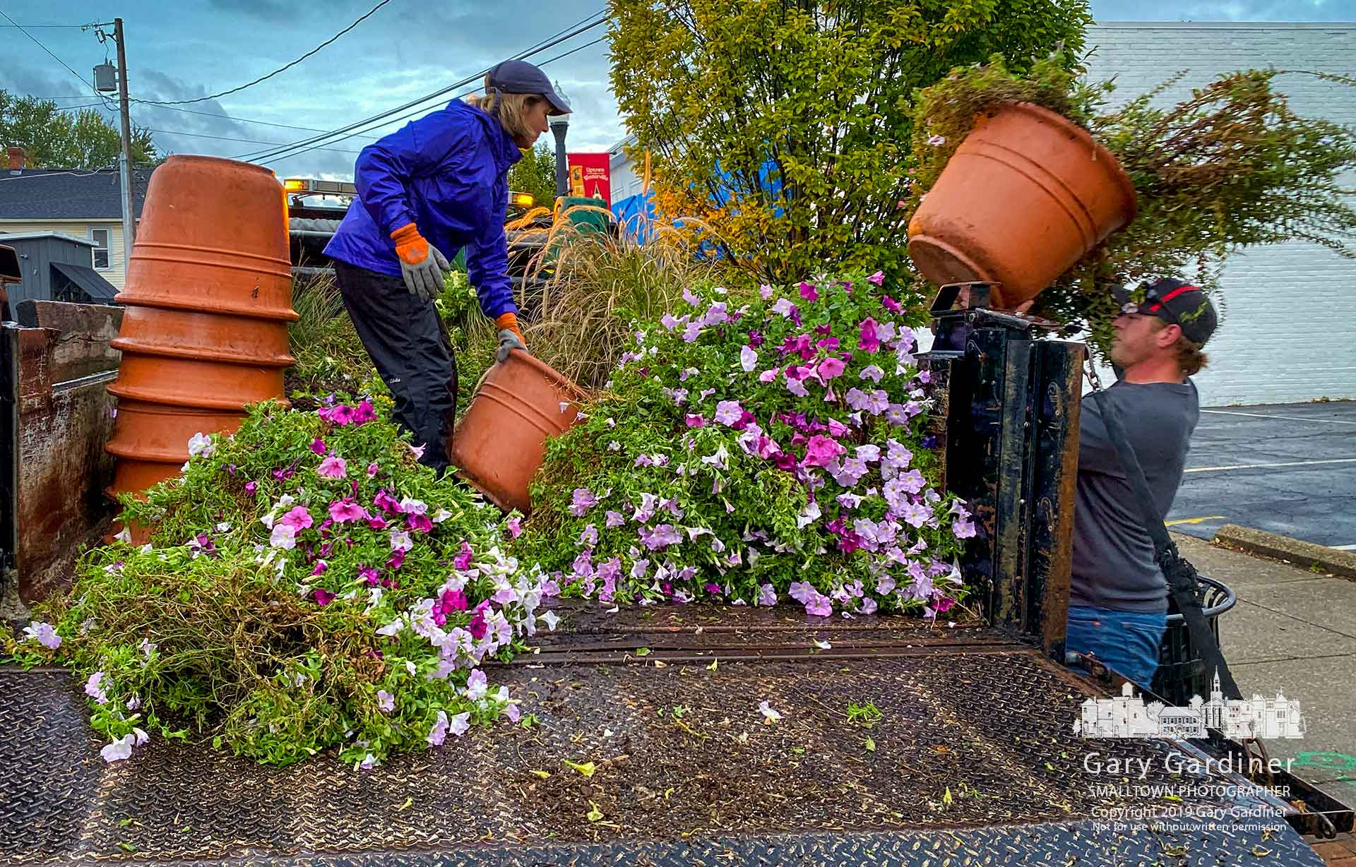 Westerville Parks and Recreation workers remove hanging baskets and planters from poles and the sidewalk in Uptown Westerville the morning after the Democratic presidential debate. My Final Photo for Oct. 15, 2019.