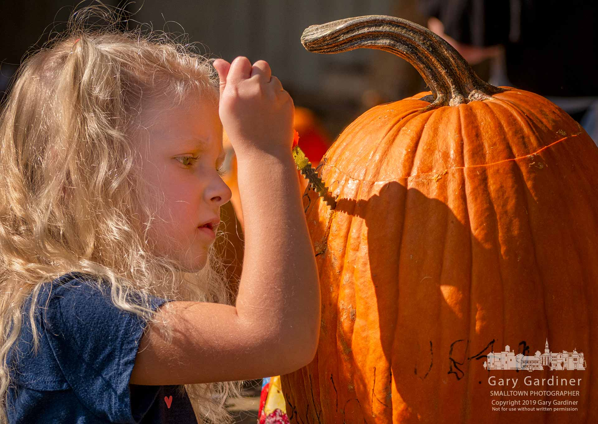 A young girl carves a face into one of the more than 2,000 pumpkins being prepared for the Greater Westerville Pumpkin Glow beginning Tuesday at Heritage Park and continuing for five days. My Final Photo for Oct. 20, 2019.