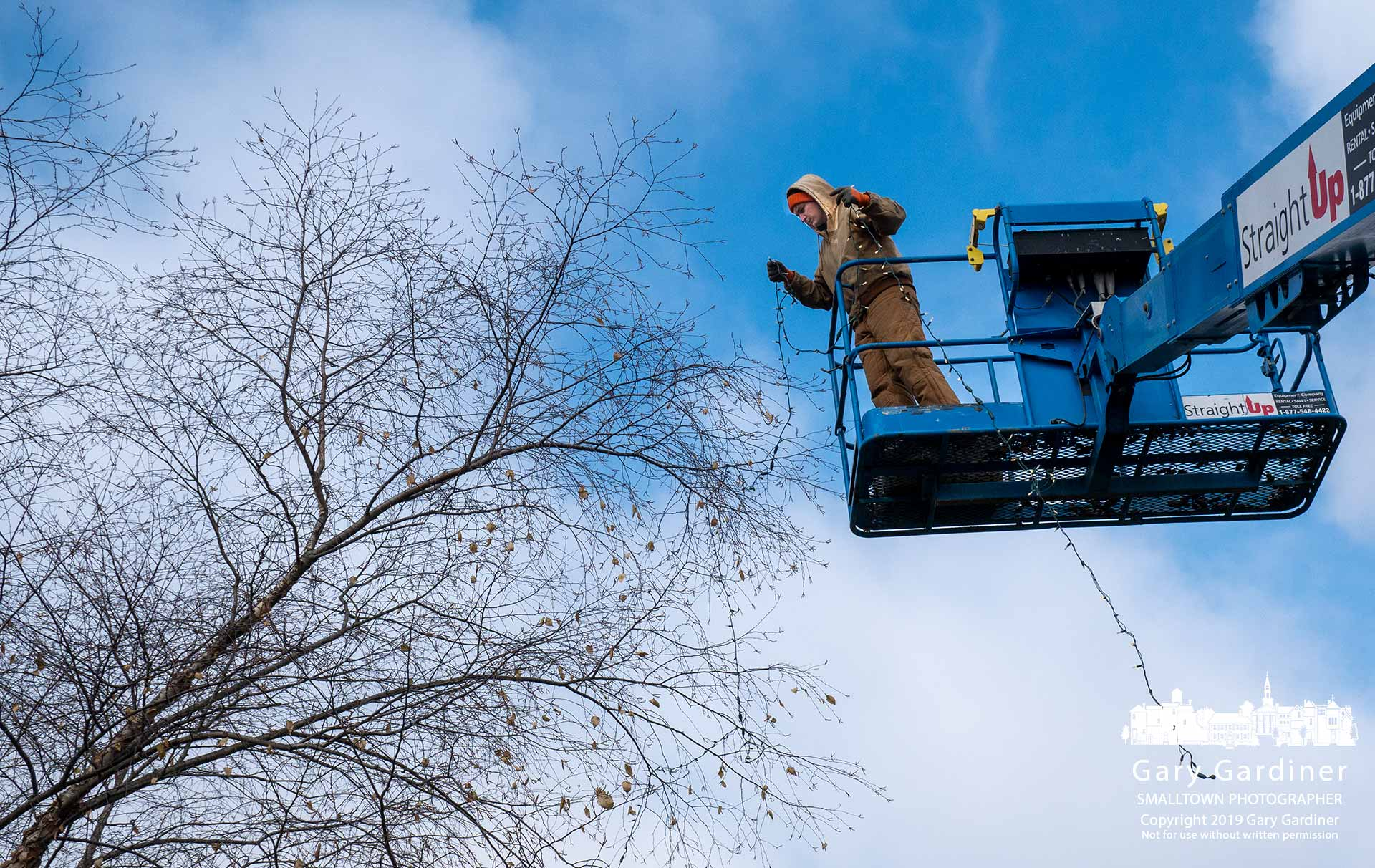A Westerville Parks worker lays strands of lights in the trees at Heritage Park as the department prepares the grounds for the holiday season. My Final Photo for Nov. 15, 2019.