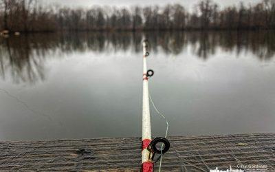 Fishing And No Fish