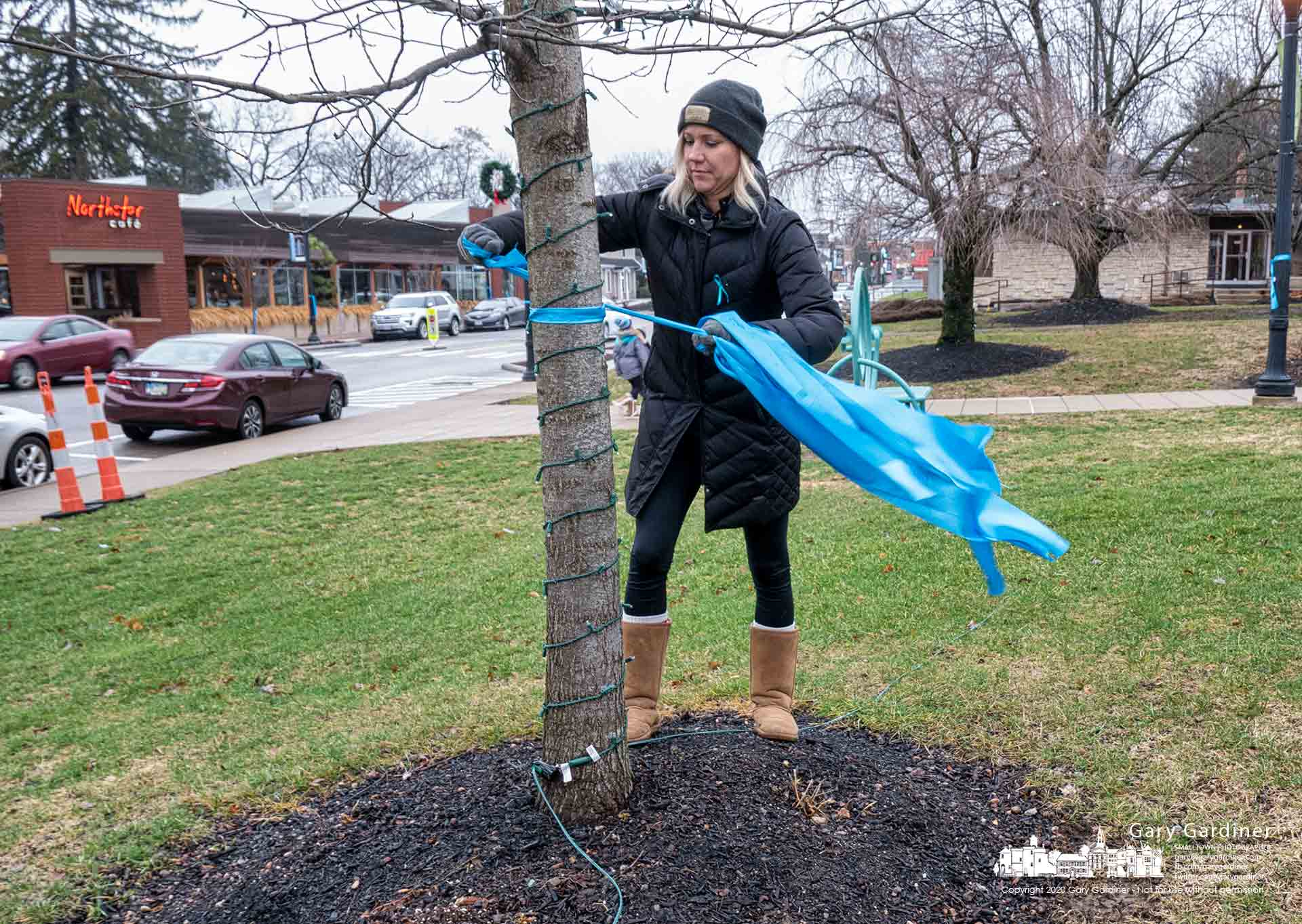Volunteers tie teal bows to utility poles and trees in Uptown Westerville marking Cervical Cancer Awareness Month with a program named Paint the Town Teal. My Final Photo for Jan. 4, 2020.