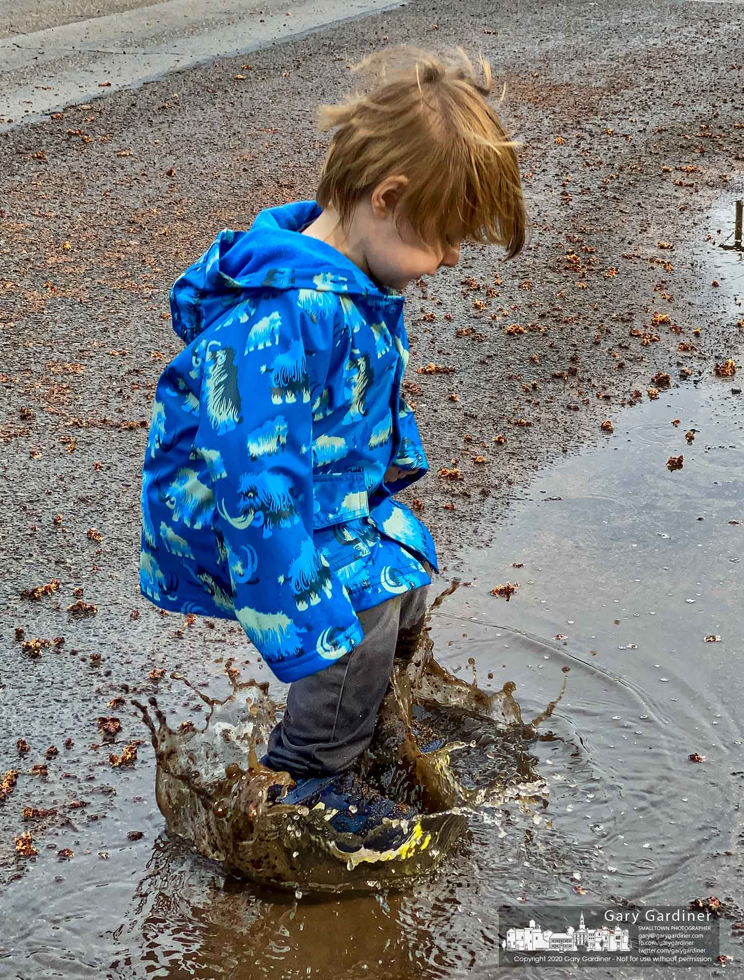 A youngster satisfies his curiosity and playtime with a series of splashes in a puddle on Vine Street where his father took home for a morning walk. My Final Photo for March 28, 2020.