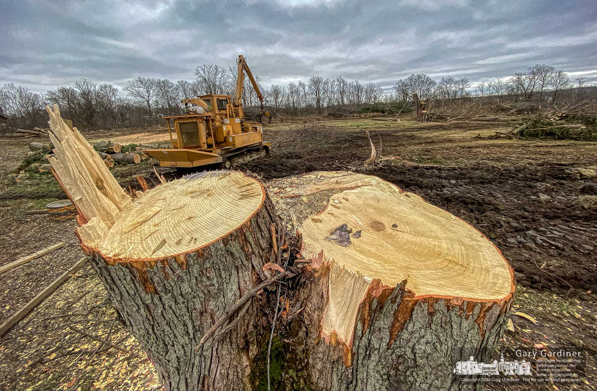 The stump of a large maple tree sits at the edge of land along Arica Road at County Line where construction began Friday for a skilled-nursing facility with the clearing of trees and brush from the site. My Final Photo for March 6, 2020.