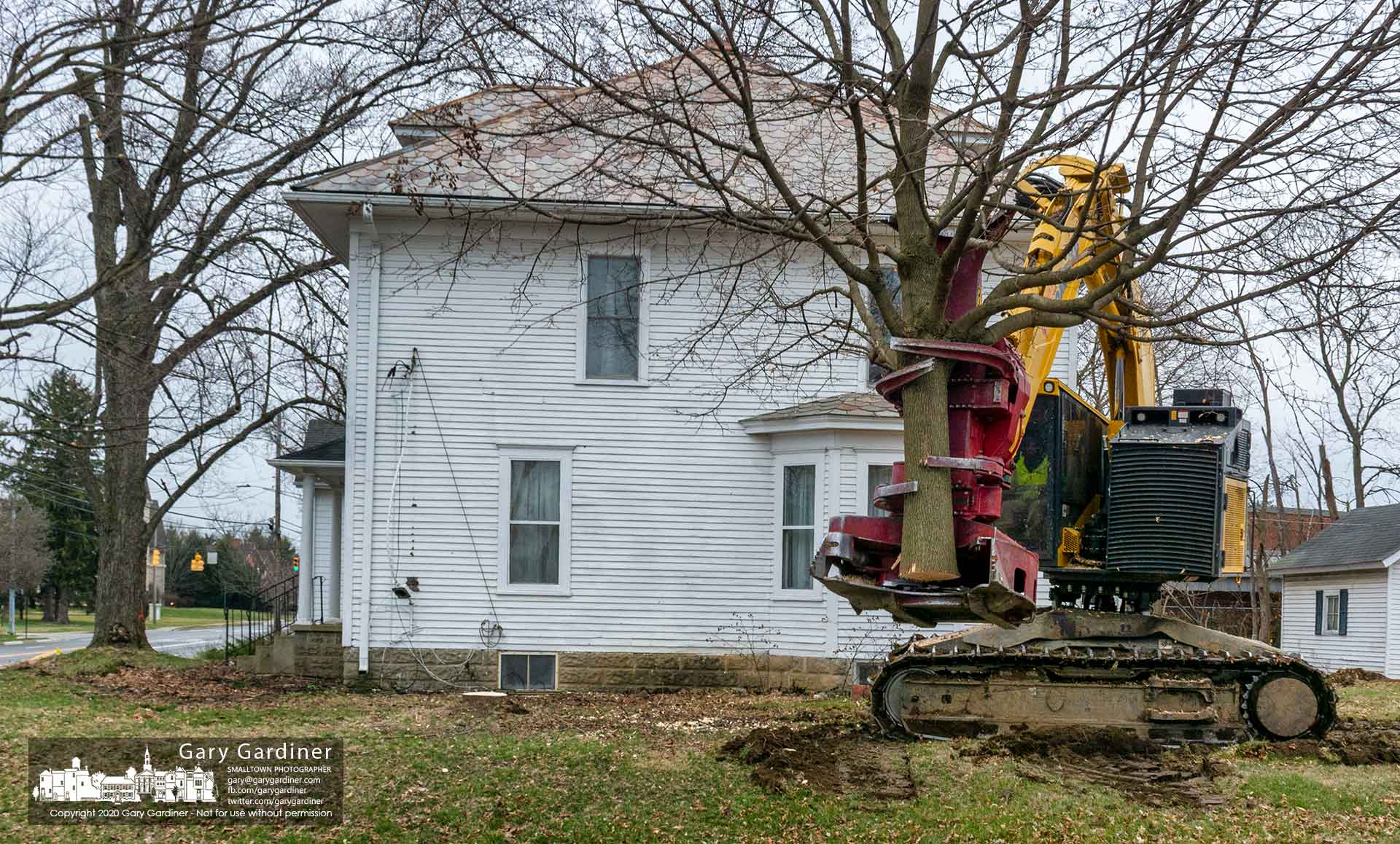 A feller carries away a tree removed from the side yard of a house on South State Street where the trees and houses are being removed to make way for an office building and apartments. My Final Photo for March 18, 2020.