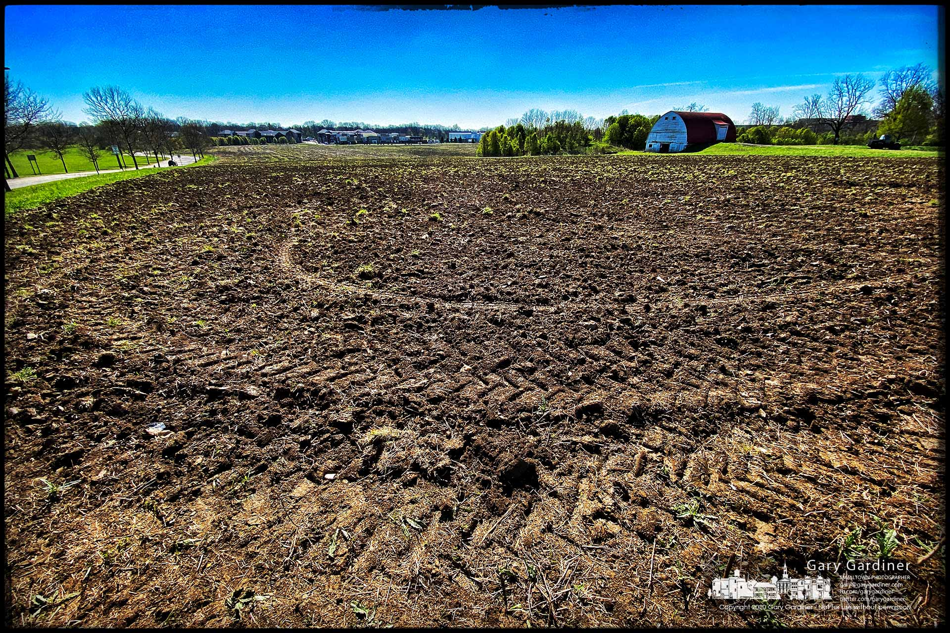 Tractor tire tread impressions mark the corners of the upper field of the Braun Farm where an overgrown hayfield will be converted to growing row crops beginning with corn this spring. My Final Photo for April 27, 2020.