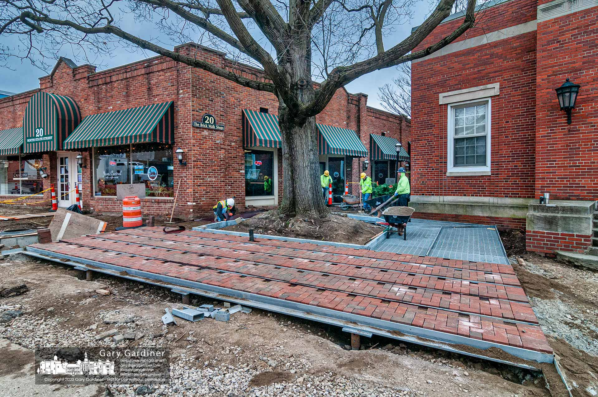 A landscaping crew lays brick on the steel grate structure built to help protect and provide a level, ADA-compliant walkway around the heritage oak next to Java Central. My Final Photo for April 1, 2020.