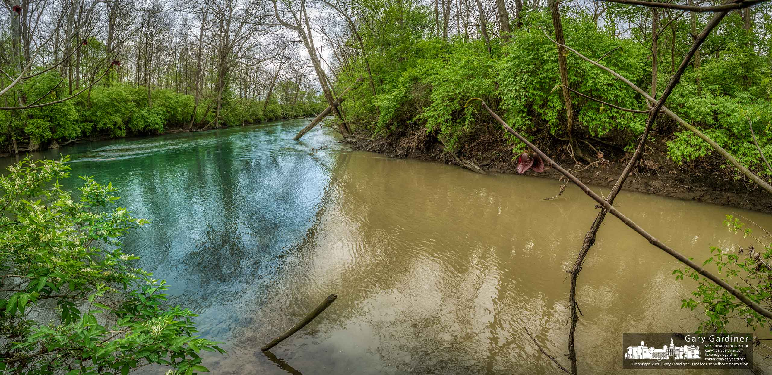 Runoff from Spring Run mixes with the clear waters of Alum Creek where they connect along Cooper Road. My Final Photo for May 8, 2020.