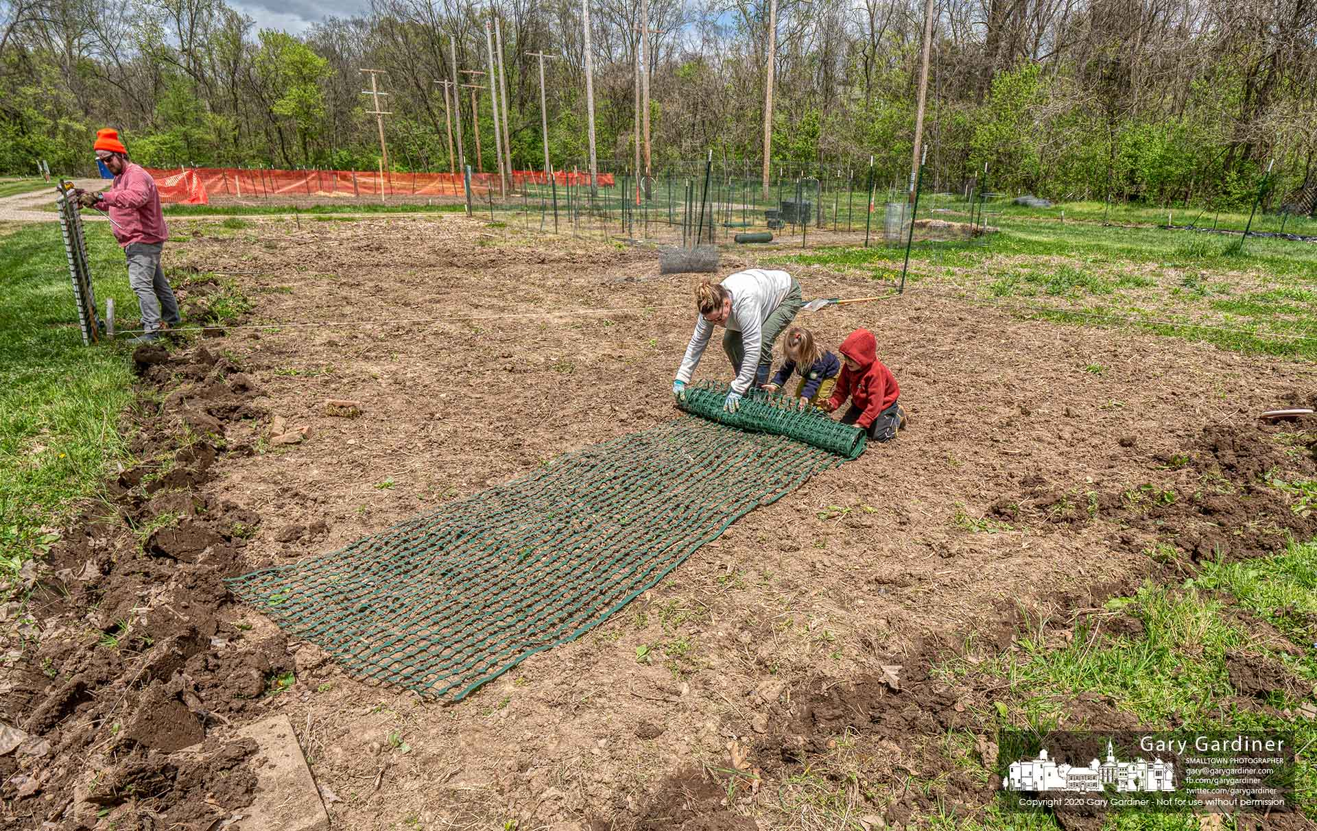 Mom and dad get a little assistance from their two children as they prepare their Westerville community garden plot for planting. My Final Photo for May 9, 2020.