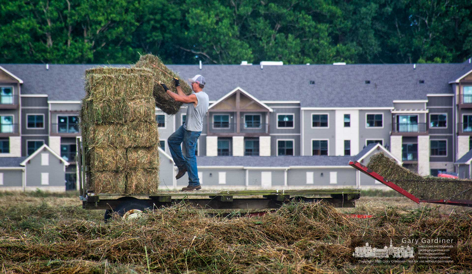 Rodney Parker tosses hay onto a wagon destined for the Otterbein Equestrian Center from the hayfields along Cooper Road at Collegeview. My Final Photo for Aug. 6, 2020.