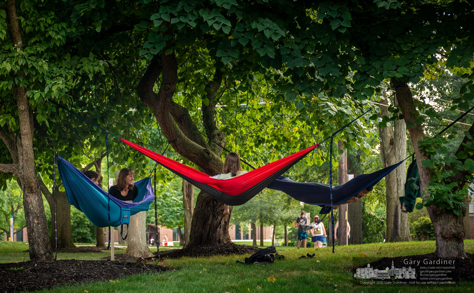 Four Otterbein University seniors spend Tuesday afternoon relaxing in their hammocks at Grove and Main waiting for classes to begin next week. My Final Photo for Aug. 17, 2020.