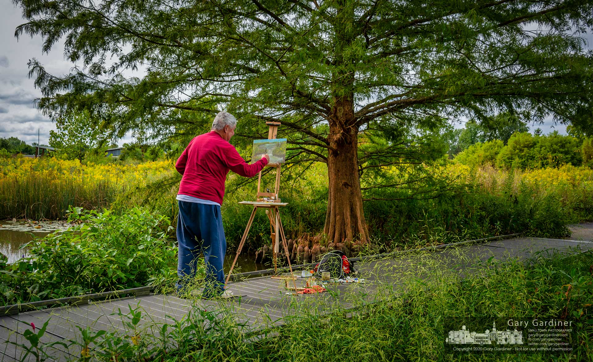 A plein air artist completes his canvas of a section of the wetlands at Highlands Park just in time for his lunch. My Final Photo for Sept. 14, 2020.