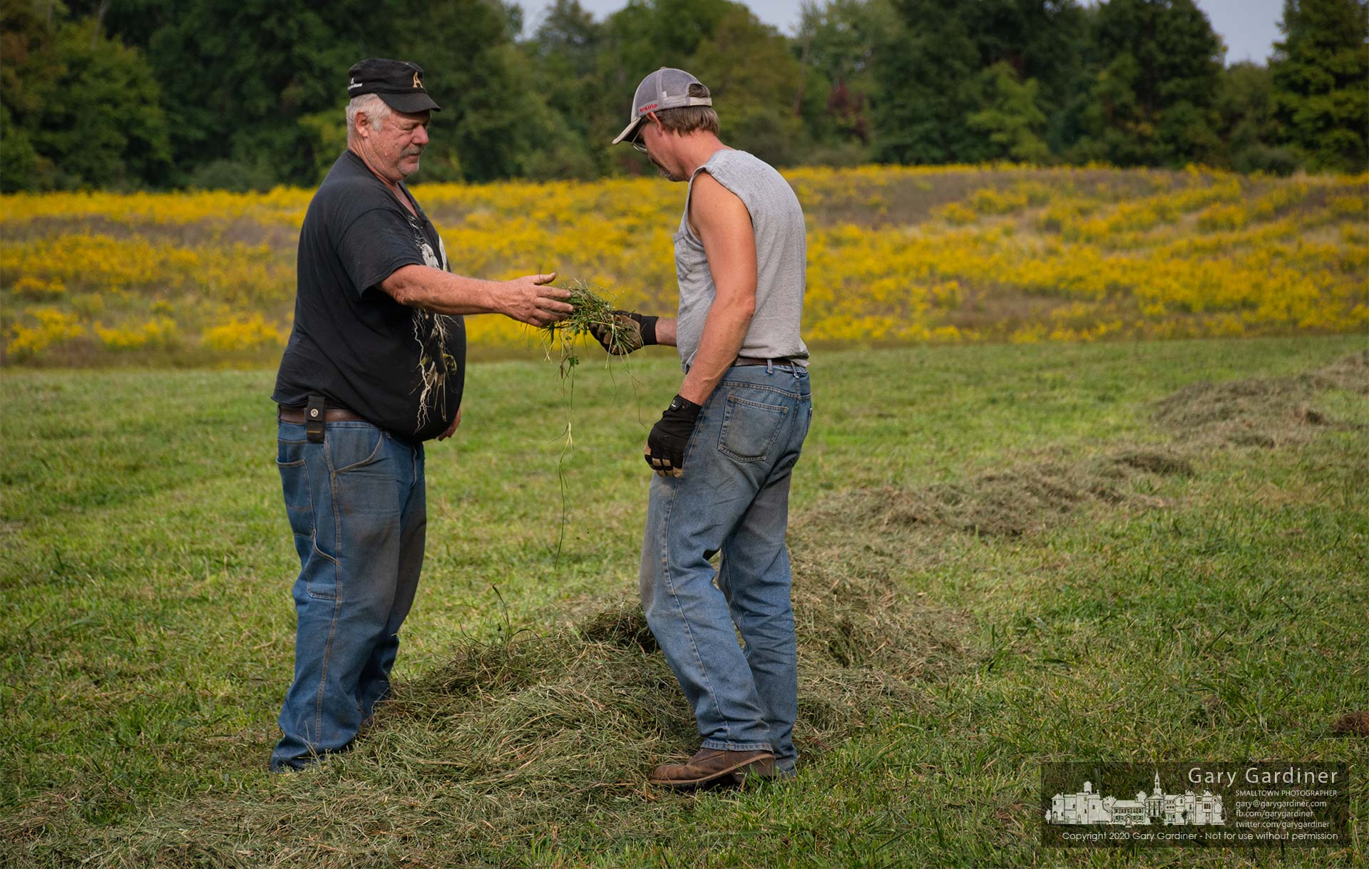 Kevin Scott and Rodney Parker check the moisture content of raked hay on the Sharp Farm before deciding it needs another day of drying before baling. My Final Photo for Sept. 23, 2020.