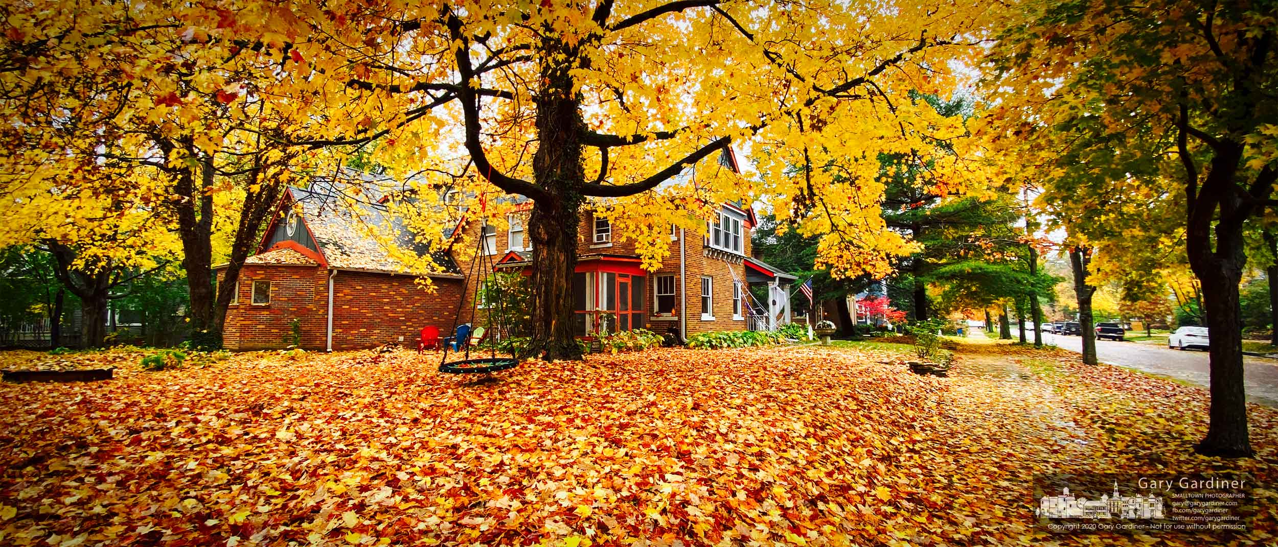 Maple tree leaves blanket the yard and sidewalk of a home on West College in Uptown Westerville. My Final Photo for Oct. 29, 2020.