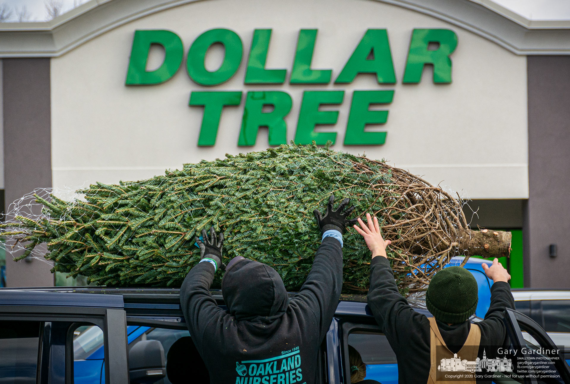 A tree sold for $80 is lifted onto the roof of a van sitting between the Dollar Tree store and the Christmas tree lot at Glengary Shopping Center on the first day of sales at the annual sales lot. My Final Photo for Niv. 27, 2020.