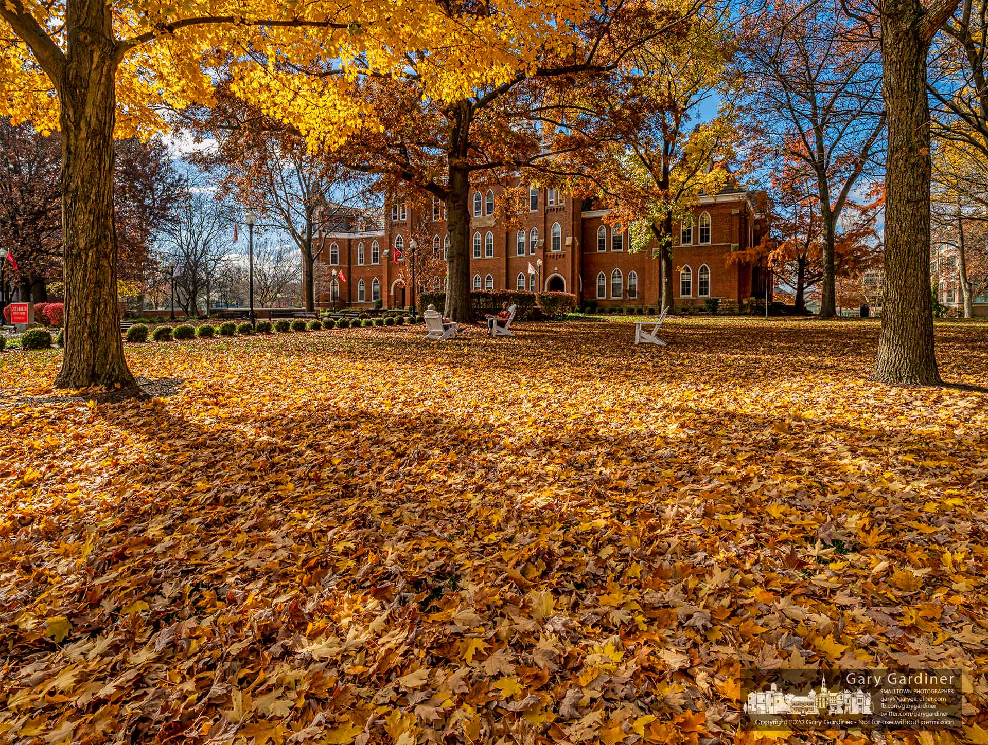 A carpet of maple leaves covers a portion of the grounds around Towers Hall where students and staff enjoy themselves in Adirondack chairs on an unusually warm fall day. My Final Photo for Nov. 10, 2020.