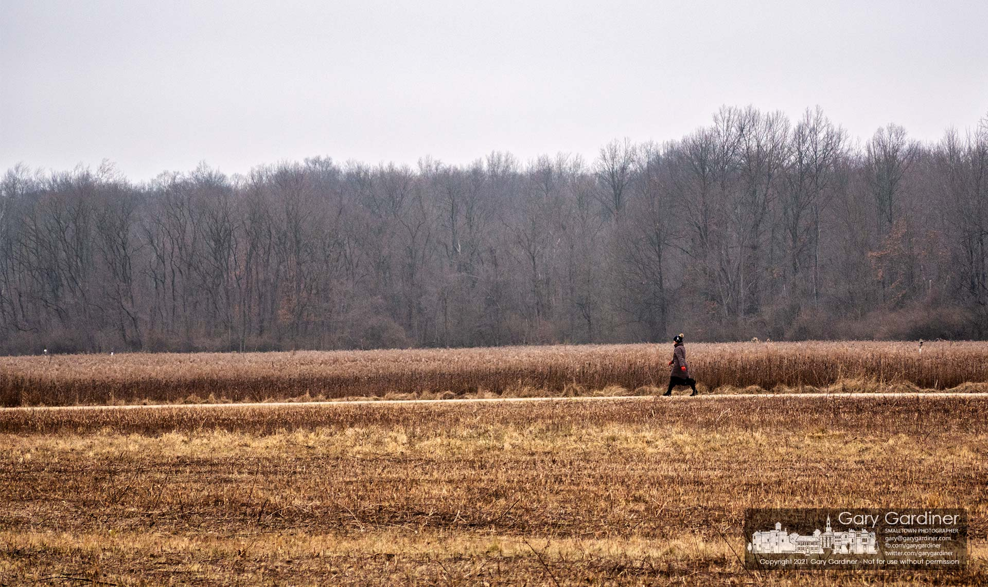 A woman walks the Spring Creek Trail across a section of the prairie at the center of Sharon Woods Metro Park. My Final Photo for Jan. 12, 2021.