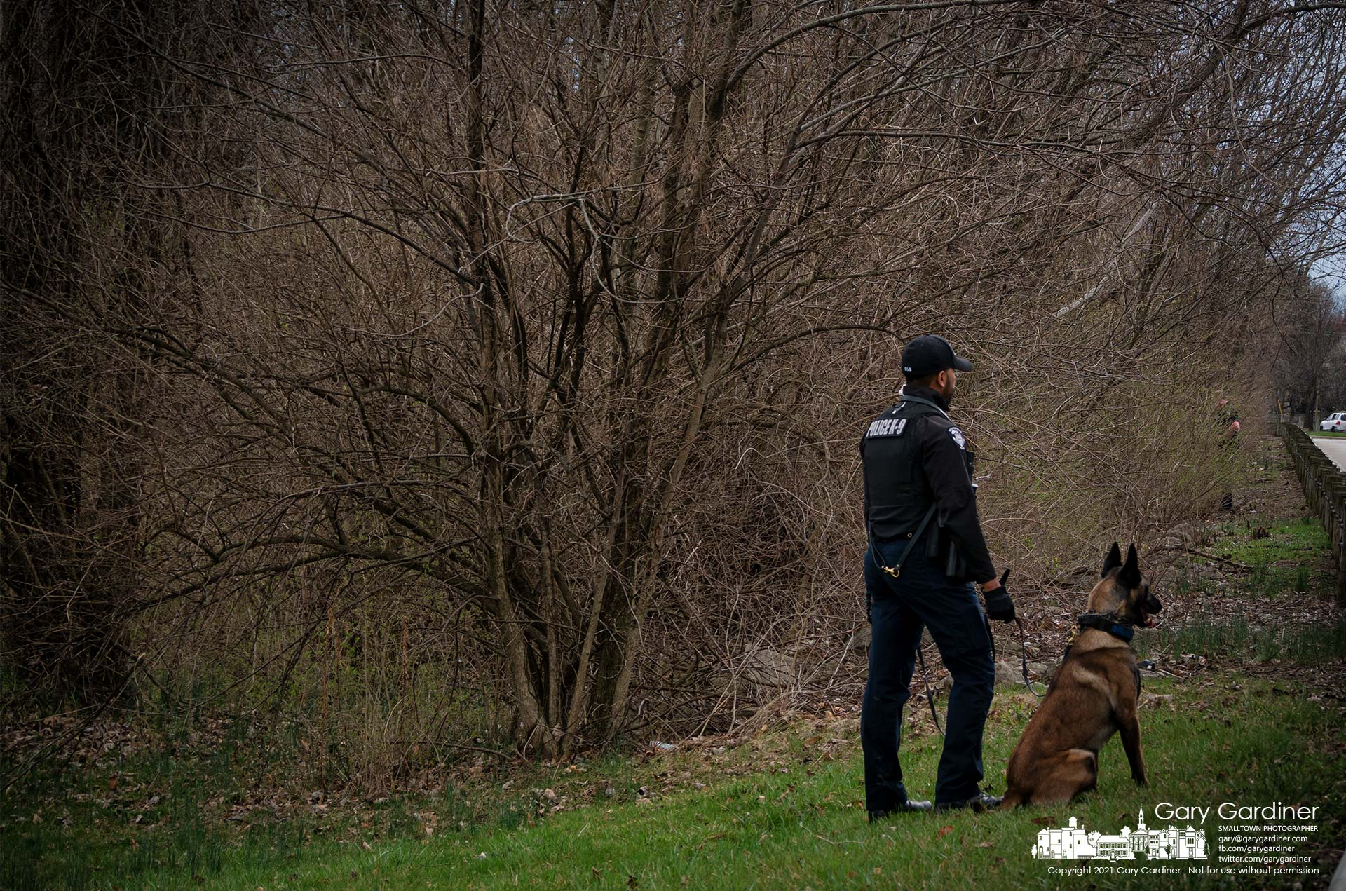 Westerville Police K-9 Officer Khyrell Baggoo and Bruno briefly stand along Sunbury Road watching a second officer search for a missing man in the woods along the shoreline of Hoover Reservoir. My Final Photo for March 25, 2021.