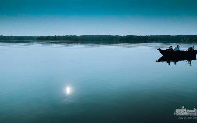 Morning Fishing Trip