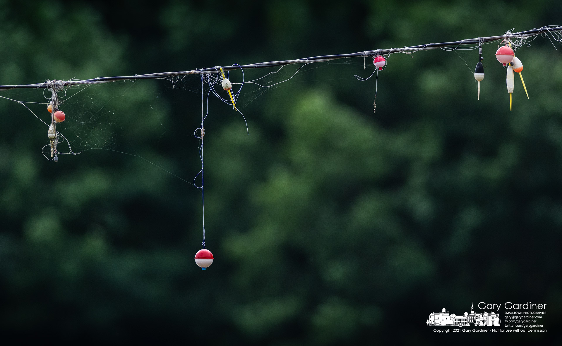 A collection of fishing bobbers, hooks, and lines hangs from an electric line connecting lights near the lake at Twin Bridge Marina on Hoover Reservoir. My Final Photo for Aug. 15, 2021.