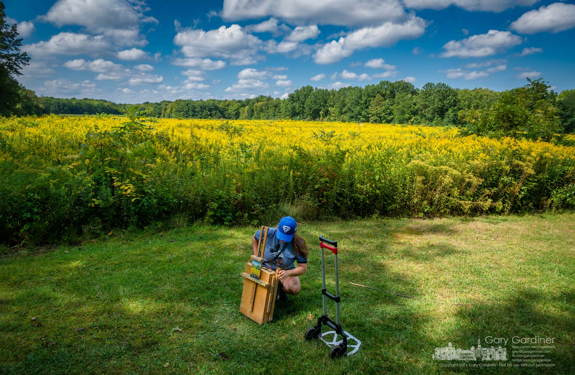 An artist puts away her portable easel, paints, and brushes after a morning with other painters at one of the goldenrod fields in Sharon Woods Metro Park. My Final Photo for Sept. 16, 2021.