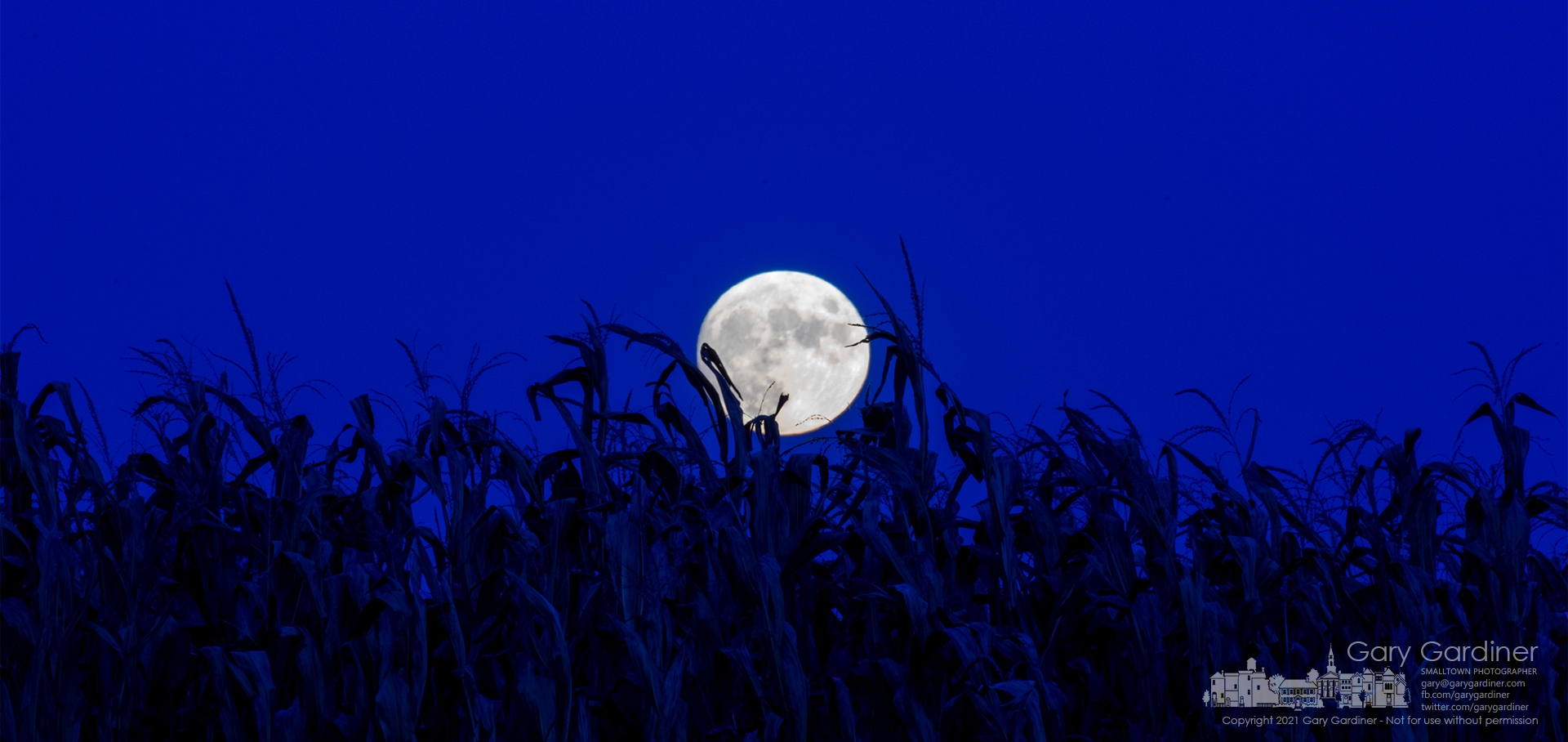The nearly full Hunter's Moon rises over the dried but not yet ready for harvest field of corn on the Yarnell farm on Africa Road. My Final Photo for Oct. 19, 2021.