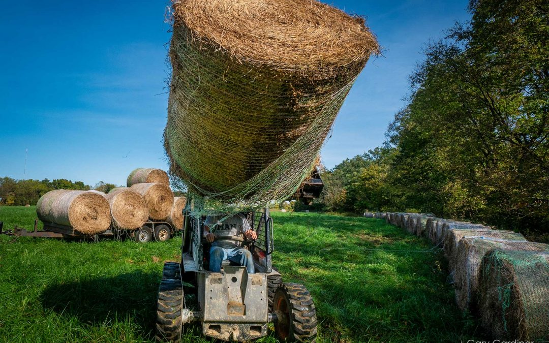 Hay Headed For Storage